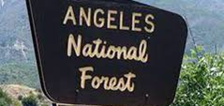 Angeles natl forest sign