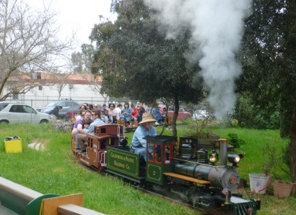 CA steamers_Wilson Park x